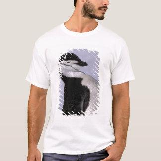 Antarctica. Chinstrap penguin T-Shirt