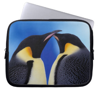 Antarctica, Emperor Penguin (Aptenodytes 2 Laptop Sleeve
