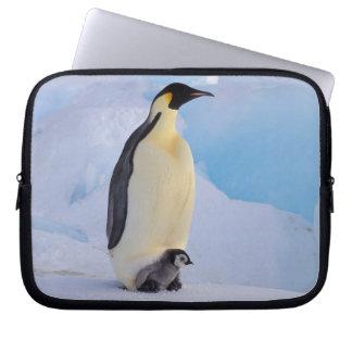 Antarctica, Emperor Penguin (Aptenodytes Laptop Sleeve