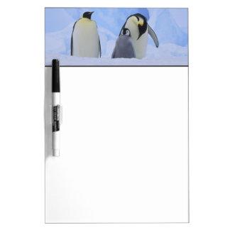 Antarctica. Emperor penguins and chick Dry Erase Board