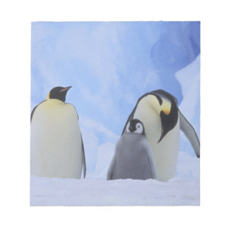 Antarctica. Emperor penguins and chick Notepad