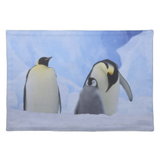 Antarctica. Emperor penguins and chick Placemat
