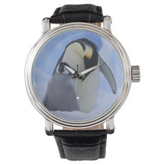 Antarctica. Emperor penguins and chick Wrist Watch