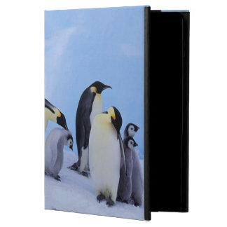 Antarctica, Emporer Penguin ((Aptenodytes iPad Air Cover