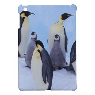 Antarctica, Emporer Penguin ((Aptenodytes iPad Mini Cover