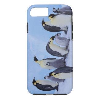 Antarctica, Emporer Penguin ((Aptenodytes iPhone 8/7 Case