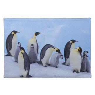 Antarctica, Emporer Penguin ((Aptenodytes Placemat