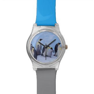 Antarctica, Emporer Penguin ((Aptenodytes Wrist Watches