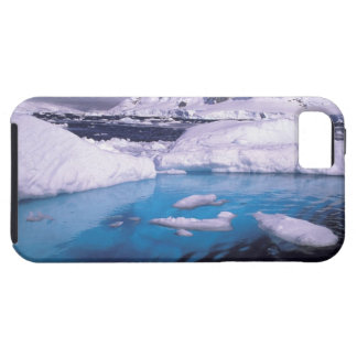 Antarctica. Expedition through icescapes 2 Case For The iPhone 5