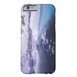 Antarctica. Expedition through icescapes Barely There iPhone 6 Case