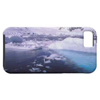 Antarctica. Expedition through icescapes iPhone 5 Case