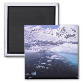Antarctica. Expedition through icescapes Square Magnet