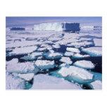 Antarctica, Ice flow. Post Card