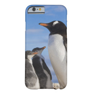 Antarctica, Neko Cove (Harbour). Gentoo penguin 2 Barely There iPhone 6 Case