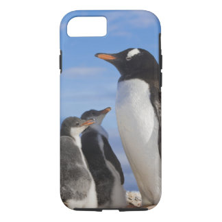 Antarctica, Neko Cove (Harbour). Gentoo penguin 2 iPhone 8/7 Case