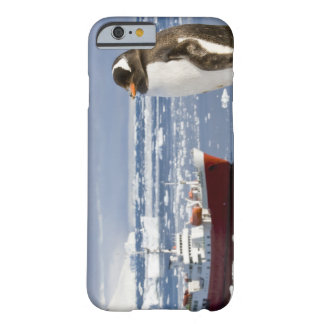 Antarctica, Neko Cove (Harbour). Gentoo penguin Barely There iPhone 6 Case