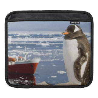 Antarctica, Neko Cove (Harbour). Gentoo penguin iPad Sleeve