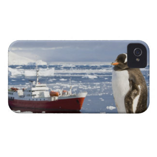 Antarctica, Neko Cove (Harbour). Gentoo penguin iPhone 4 Cases