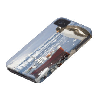 Antarctica, Neko Cove (Harbour). Gentoo penguin iPhone 4 Covers