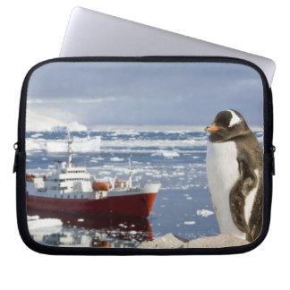 Antarctica, Neko Cove (Harbour). Gentoo penguin Laptop Sleeve