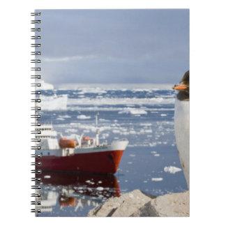 Antarctica, Neko Cove (Harbour). Gentoo penguin Notebook
