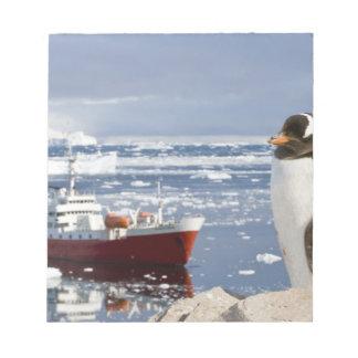 Antarctica, Neko Cove (Harbour). Gentoo penguin Notepad