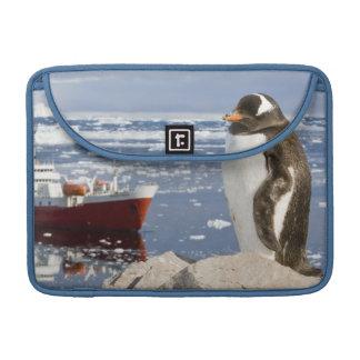 Antarctica, Neko Cove (Harbour). Gentoo penguin Sleeve For MacBook Pro
