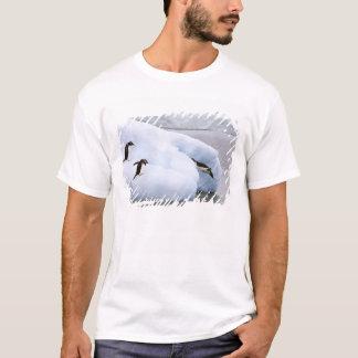 Antarctica, Neko Harbor. One gentoo penguin T-Shirt