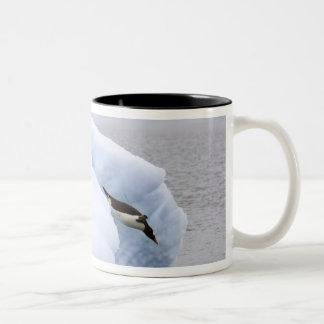 Antarctica, Neko Harbor. One gentoo penguin Two-Tone Coffee Mug