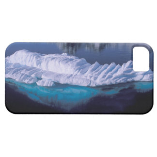 Antarctica, Paradise Bay. Iceberg in crystal Barely There iPhone 5 Case