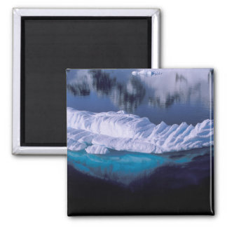 Antarctica, Paradise Bay. Iceberg in crystal Square Magnet