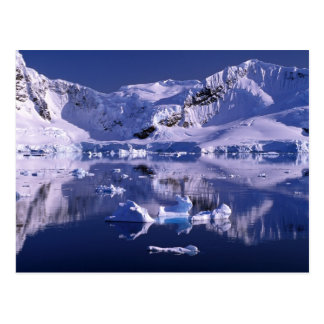 Antarctica, Paradise Bay Postcard