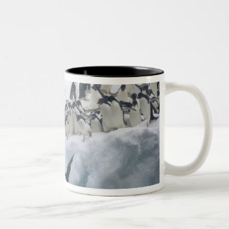 Antarctica, Paulet Island. Adelie penguins Two-Tone Coffee Mug