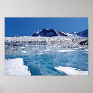 Antarctica Posters