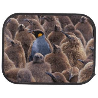 Antarctica, South Georgia Island, King penguins Car Mat
