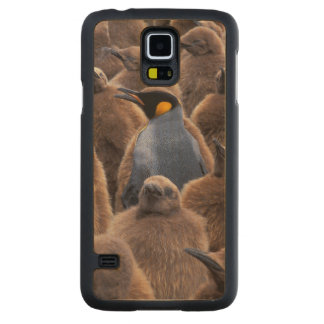 Antarctica, South Georgia Island, King penguins Carved Maple Galaxy S5 Case
