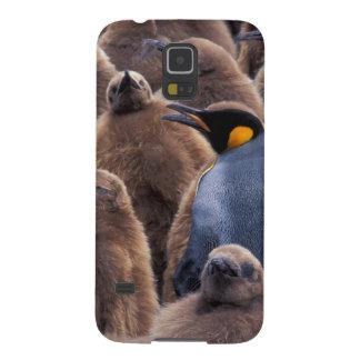 Antarctica, South Georgia Island, King penguins Case For Galaxy S5