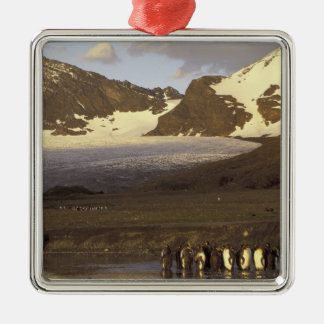 Antarctica, South Georgia Island. King penguins Christmas Ornament