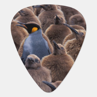 Antarctica, South Georgia Island, King penguins Guitar Pick