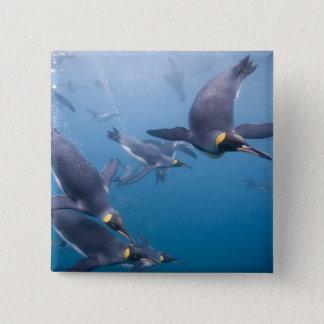 Antarctica, South Georgia Island (UK), 2 15 Cm Square Badge