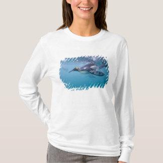 Antarctica, South Georgia Island UK), 2 T-Shirt