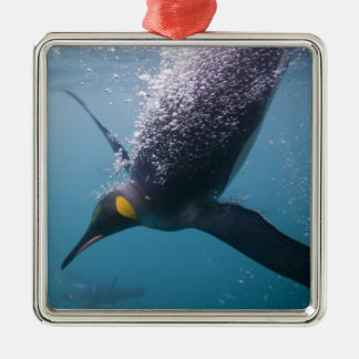 Antarctica, South Georgia Island (UK), 3 Christmas Ornament