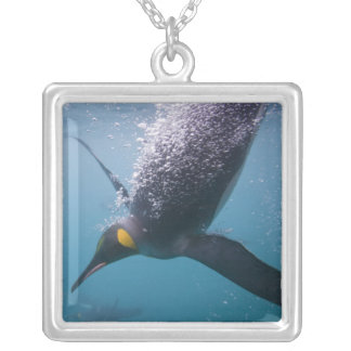 Antarctica, South Georgia Island (UK), 3 Silver Plated Necklace