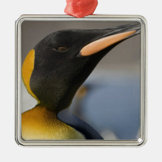 Antarctica, South Georgia Island UK), 5 Christmas Ornament