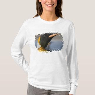 Antarctica, South Georgia Island UK), 5 T-Shirt
