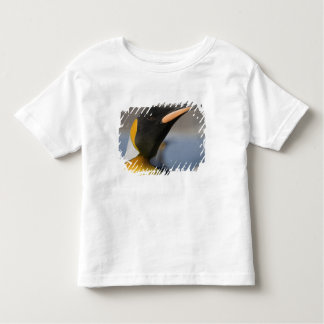Antarctica, South Georgia Island UK), 5 Toddler T-Shirt