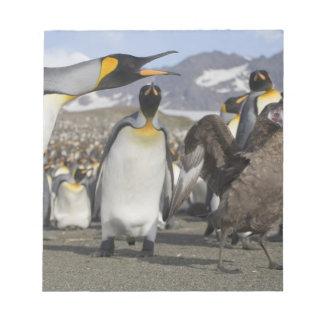 Antarctica, South Georgia Island (UK), Brown Notepad