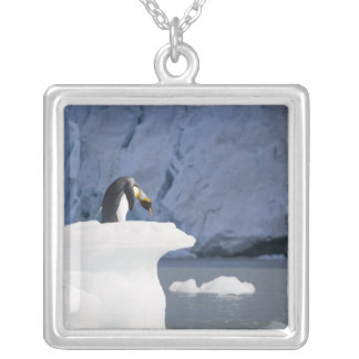 Antarctica, South Georgia Island (UK), King 13 Silver Plated Necklace