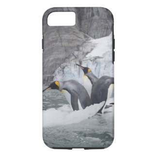 Antarctica, South Georgia Island (UK), King 14 iPhone 8/7 Case