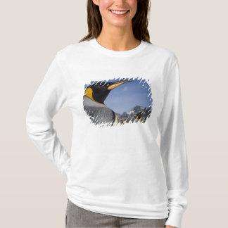 Antarctica, South Georgia Island UK), King 2 T-Shirt